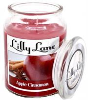 Lilly Lane Apple Cinammon Scented Candle Large Lidded Mason Glass Jar – Wax Capacity 510grams, Burn Time Up to 75 Hours, High Quality Premium paraffin wax, Natural Material Wick , 100% recyclable, Large Lidded Mason Glass Jar Retail Box No warranty